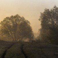 Там за туманами...... :: Александр Малышев