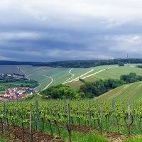 Бавария :: Надежда