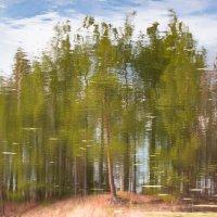 Весеннее отражение реальности... :: Sergey Apinis