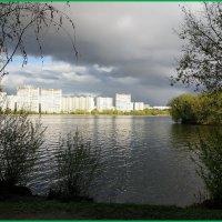 Май мглою небо кроет... :: Николай Дони