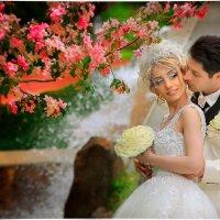 wedding :: Армен Абгарян