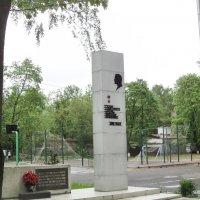 Памятник Власову в Подмосковных Люберцах. :: Ольга Кривых