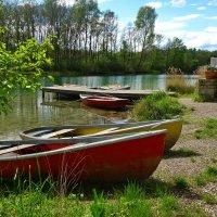 У озера.. :: Galina Dzubina