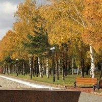 Осень в Усть-Каменогорске. Набережная Иртыша. 2016.г. :: Борис Белоногов