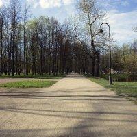В парке :: Aнна Зарубина