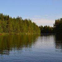 Река Низьма :: Ольга