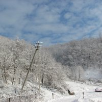 зима :: Марьяна