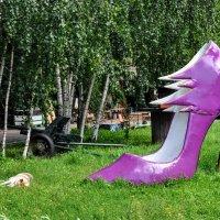 Пёс , пушка и туфля :) :: Анатолий Колосов