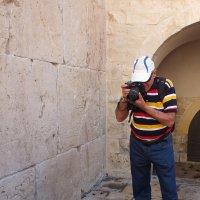 Подползай... фотограф готов! :: Валерий Подорожный