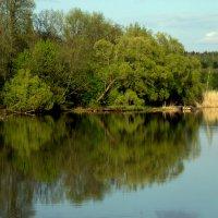 Пейзаж :: Валерий Самородов