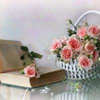 Этюд с розами :: lady-viola2014 -