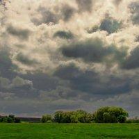 Майских дней осенние ненастья... :: Лесо-Вед (Баранов)