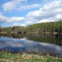 На реке :: Наталья