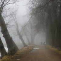 На прогулке...... :: Юрий Цыплятников