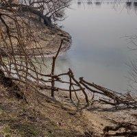 На реке :: Николай Саржанов