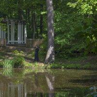 Есть в графском парке черный пруд... :: Александр Лебедевъ