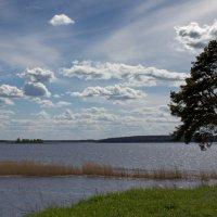 Озеро Селигер. :: Ольга Лиманская