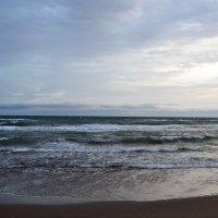 Над седой равниной моря... :: Ольга