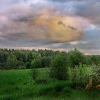 Весенний вечер после дождей :: Лара Симонова