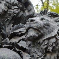 Царь зверей :: Татьяна Бронзова