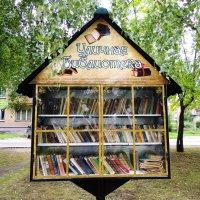 уличная библиотека :: kaban-4eg Алтайский