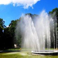 Фонтан в парке. :: Антонина Гугаева