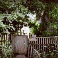 Старый дом.. :: Dmitriy Photo