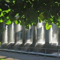 Львиный каскад - фонтан в Петергофе :: Елена