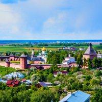 Вид с Ризоположенской колокольни на Спасо-Ефимиев монастырь :: Dimirtyi