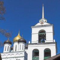 Вид на Троицкий собор :: Сергей Залаутдинов