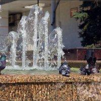 Водные процедуры. :: Anatol Livtsov