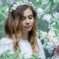 нежная весна :: Viktoriya Balaganskaya