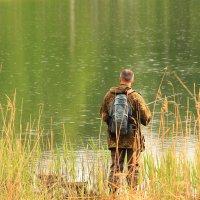 Ловись рыбка большая и маленькая :: Татьяна Ломтева