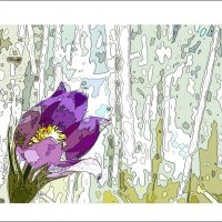 цветок и весна :: Николай Староверов