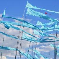 Ветровые маячки :: Наталья Ткачёва