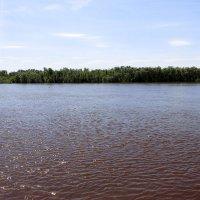 Большая вода :: раиса Орловская