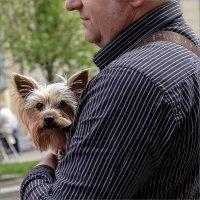 Недама с собачкойю :: Александр