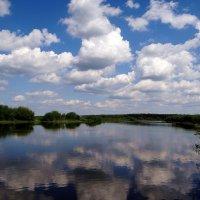 На реке Преголя.. :: Антонина Гугаева