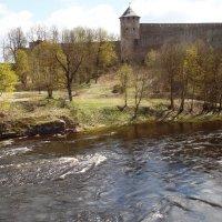 Крепость Ивангорода. :: Марина Харченкова