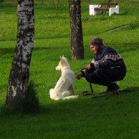Вы всё еще не любите блондинок? :: Андрей Лукьянов