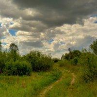 луговая дорога перед штормовым предупреждением :: Александр Прокудин