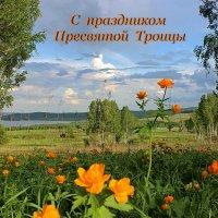 У таёжных сибирских дорог полыхает в июне жарок... :: Наталья Юрова