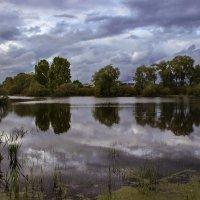 В пасмурный день у пруда.... :: Альмира Юсупова