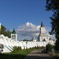 Монастырская стена :: Анна Воробьева