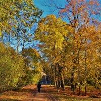 Дорожка в Золотую осень... :: Sergey Gordoff