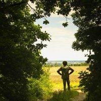 Там, где заканчиваются лесные дороги :: Сергей Пузырёв