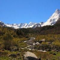 Сияет утро снежными горами... Ущелье Адыл-Су. Приэльбрусье. Высота более 2300 м. :: Vladimir 070549