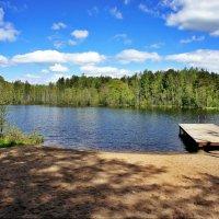 Озеро Горское :: Елена Павлова (Смолова)