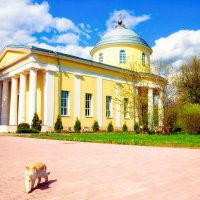 Троицкий храм Богородского благочиния :: Ангелина Хасанова