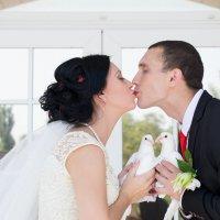 Свадебные голуби :: Екатерина Полина